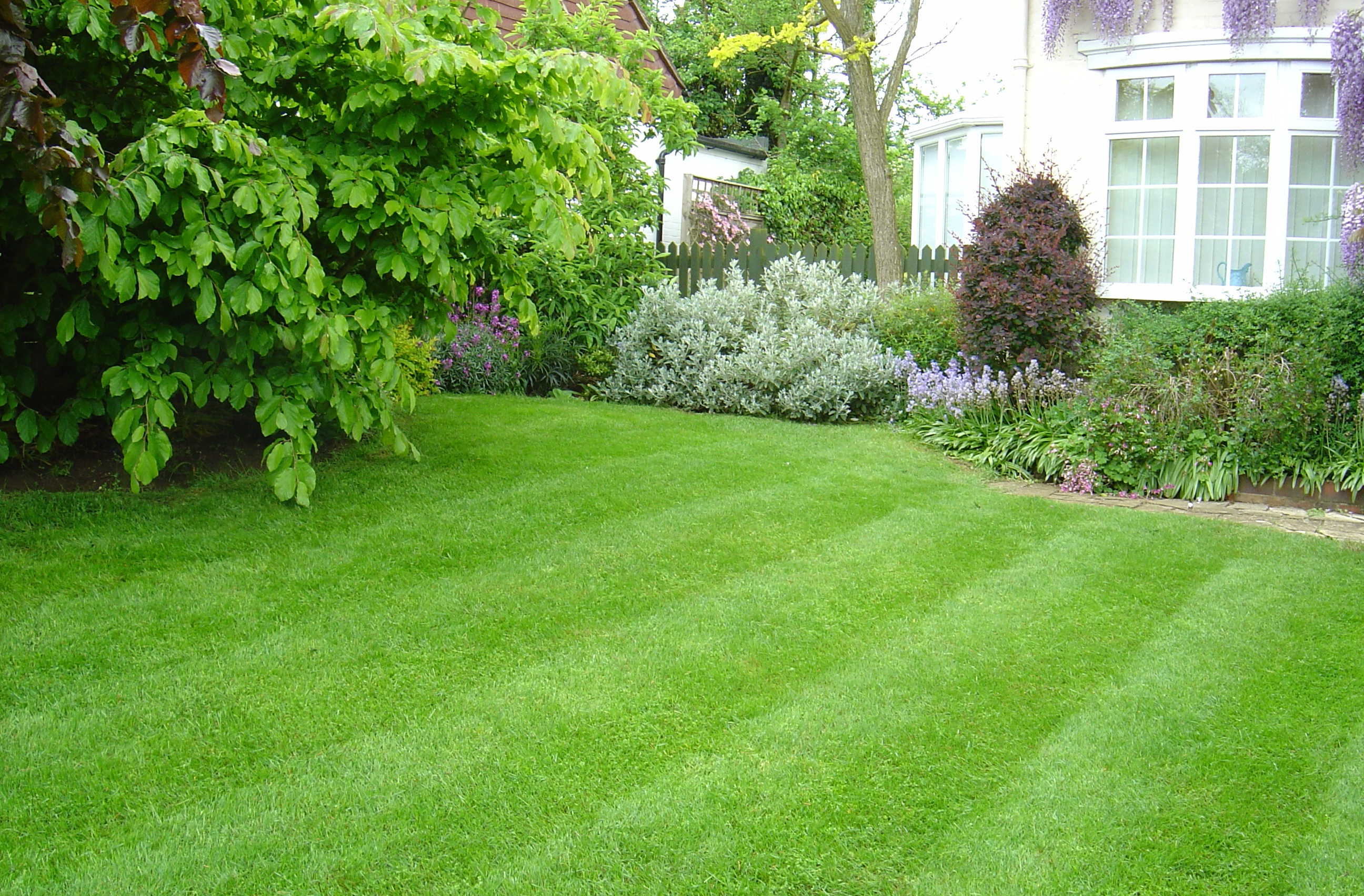 Lawn care vertopia gardens for Outdoor garden
